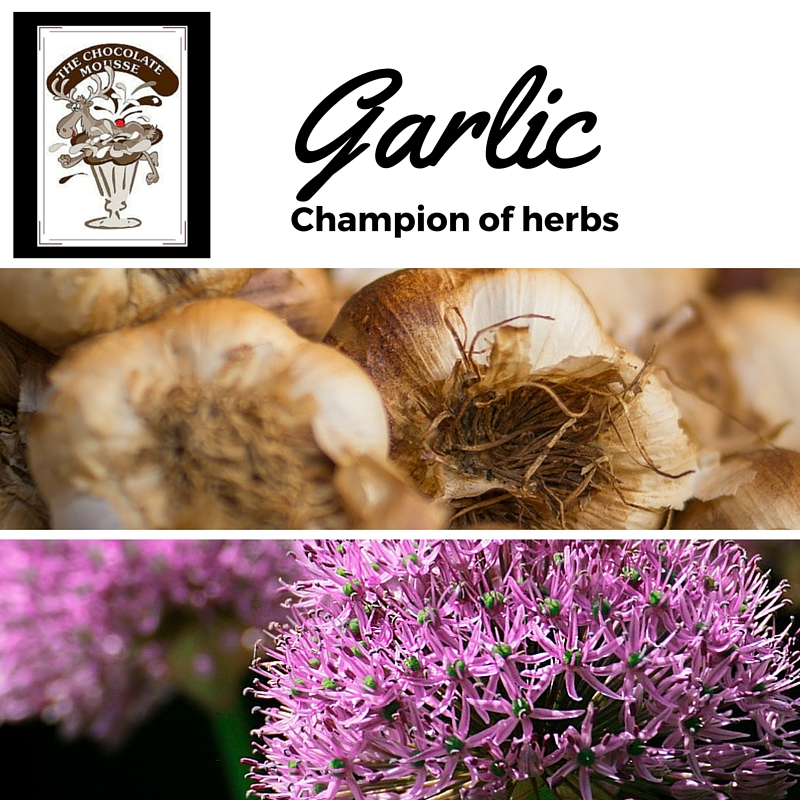 Garlic is not only beautiful when it blooms it does beautiful things for your health